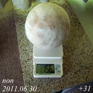 110728a